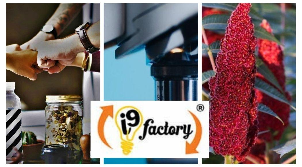 I9Factory Incubatore d'impresa